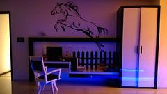 Wall Design (mdharmesh69) Tags: horse studytable