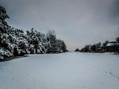 Snow in neighborhood park in December (mbell1975) Tags: park snow virginia december unitedstates neighborhood centreville