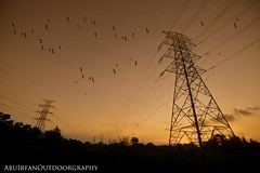 approaching dusk (AbuIrfan Outdoorgraphy) Tags: sunset sky tower electric metal danger grid wire energy industrial power dusk steel nobody cable structure line equipment generator frame electricity tall powerful watt transmission built distribution volt highvoltage supply voltage