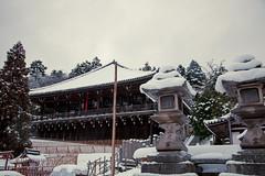 (igu3) Tags: snow japan nara