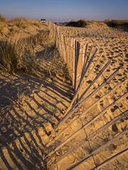 Walberswick Beach Fence (Damian_Ward) Tags: ocean morning sea beach fence lumix coast suffolk seaside shadows panasonic seafront beachhuts sanddunes dmc goldenhour waveney walberswick hff m43 mft gh3 solebay 1445mmlens damianward ©damianward micro43 microfourthirds happyfencefriday hfs014045