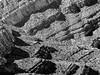P1010602.JPG (Michael Ferranti Photography) Tags: vegas trees arizona lake signs man mountains birds clouds route66 neon candy desert lasvegas grandcanyon nevada hooverdam ferriswheel elk redrock southrim neonsigns gothamayurveda michaelferrantiphotography mferrantiphoto