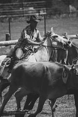 Rancho Kiowa 2015 – 25 (Aimar Ruiz (AKA ikeamendi)) Tags: party horses blackandwhite horse america portraits canon caballos cow cowboy texas fiesta cows indian valle bull bulls story riding american western toros americana indians rider burgos mena rancho vaca horseriding vacas reportage estadosunidos sombreros vaquero tejas kiowa reportaje exhibición siones 550d villasana suerño sionesdemena