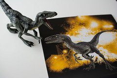 Velociraptor Blue loves how she looks in the calendar (janetsaw) Tags: blue movie toy calendar dinosaur action figure merchandise collectible squad velociraptor jurassicworld