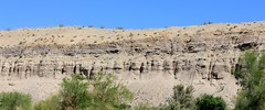 IMG_0160.jpg (DrPKHouse) Tags: arizona unitedstates loco bullhead ehrenberg