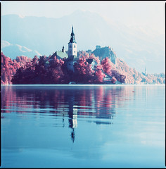 same view with a different exposure (steve-jack) Tags: hasselblad 501cm 150mm kodak aerochrome bw 099 filter slovenia lake bled red infrared film 120 medium format 6x6 tetenal e6 kit epson v500