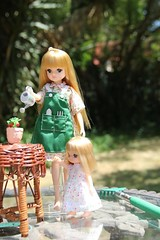 In the Garden 03 (Licca-chan) Tags: autumn amy jasmine gloria honey licca
