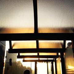 (ilana emer) Tags: morning orange yellow train sunrise germany bonn pariser auerberg bonngermany pariserstrasse pariserstrase