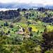 Paesaggio dopo San Francisco el Alto