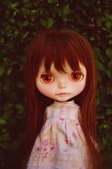 girl at the garden wall