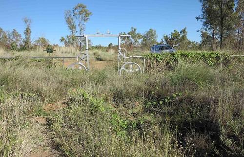Pioneer Cemetery G1X2133