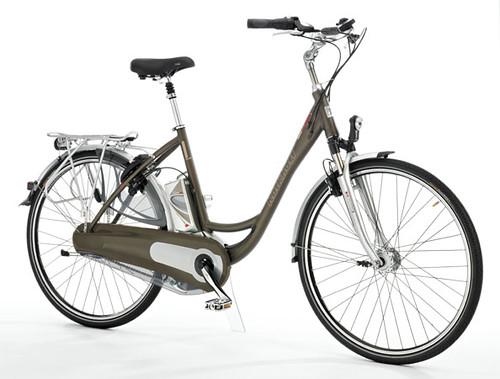 Photo - Cruiser E bike