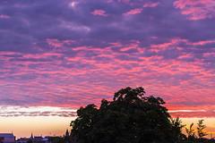Cloudy Sunset (dcabrerizo) Tags: sunset red summer germany deutschland sonnenuntergang purple cloudy sommer verano alemania puestadesol bremen weser nuboso osterdeich
