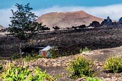 Caravan of Lava (explored 04/10/13) (galvanol) Tags: africa mountain mountains rock landscape island volcano lava flora village hiking ashes crater ash agriculture fogo caboverde capeverde caldeira canon70200mmf4lusm volcanism ilhadofogo kapverden picodofogo chdascaldeiras