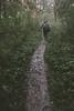Woods (Sergei Chervakov) Tags: autumn nature digital forest canon400d canonefs1855mm3556