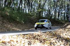 Rally Avala 20.10.2013 (Igor Vujanovic) Tags: auto car zeiss canon eos rally serbia racing yugo 6d zastava srbija sonnar avala automobil reli takmicenje automoto trka