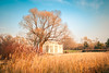 a cottage in the woods (chungshane) Tags: blue autumn sky plant tree yellow 35mm canon landscape woods harbin 1dsmarkii northeastchina 3514l