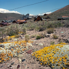 Abandoned land (Timo Kirkkala) Tags: california usa color mill abandoned film iso100 unitedstates roadtrip ghosttown bodie hasselblad500cm kodakektar standardstampmill
