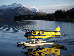 "Alaska Seaplanes turning and taxing to dock (Gillfoto) Tags: alaska juneau seaplanes floatplane dehavilland alaskaseaplanes ""dehavilland"" ""dehavillanddhc2beaver"""