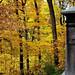 "Cincinnati – Spring Grove Cemetery & Arboretum ""Another Journey"