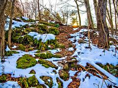 Snowy Trail (DonMiller_ToGo) Tags: newyork nature hdr gf1 chittenangofalls hdrphotography