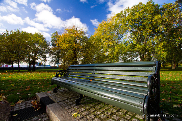 Lonesome Bench At Hyde Park, London, United Kingdom
