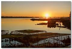 Rio Lima (vmribeiro.net) Tags: portugal rio geotagged do lima castelo viana geo:lat=4169705 geo:lon=8806895