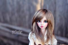 Amberwood (Eludys) Tags: doll bjd fairyland celine msd mnf minifee eludys