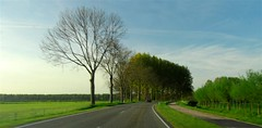 Netherlands Roadscapes 08