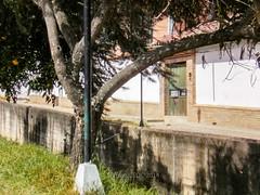 12127289363 817295cee2 m Antiguos Baños Públicos de Pamplona, hoy Residencias Femeninas