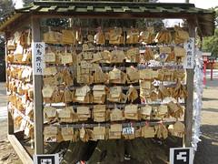 -  / Ema - Washinomiya Shrine - Washinomiya, Kuki, Saitama (Ogiyoshisan) Tags: japan japanese shrine  saitama miyuki   takara ema izumi kuki kagami subculture  tsukasa  luckystar    konata  hiiragi    washinomiya