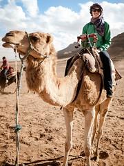 Debbie on her camel (Graham Gibson) Tags: sahara trek desert olympus dromedary panasonic camel morocco 20mm tepper f17 gf1 918mm