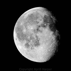 """Stacked Lunar image by Aprill Harper • <a style=""""font-size:0.8em;"""" href=""""http://www.flickr.com/photos/74627054@N08/14070247927/"""" target=""""_blank"""">View on Flickr</a>"""
