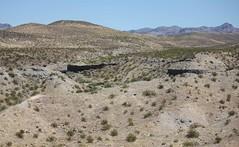 IMG_0013.jpg (DrPKHouse) Tags: arizona unitedstates loco goldenvalley bullhead