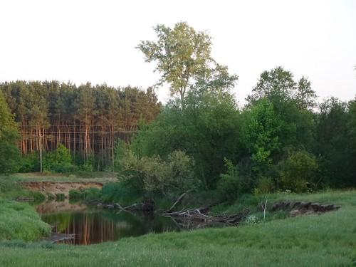 Zakola Świdra między Glinianką a Wolą Karczewską