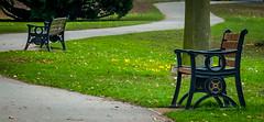 Bench (Khalid H Abbasi) Tags: d90 nikon england earlsdon coventry bench warmemorialpark