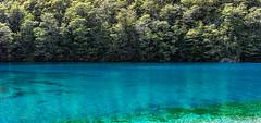 Blue Lake - clearest in the world (NettyA) Tags: 2017 bluelake nz nelsonlakesnationalpark newzealand sonya7r southisland tasman tasmannz traverssabinecircuit hike hiking tramp tramping lake clear rotomairewhenua