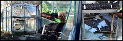 VOORJAARSSTORMSCHADE || SPRING STORM DAMAGE (Anne-Miek Bibbe) Tags: canoneos700d canoneosrebelt5idslr annemiekbibbe bibbe nederland 2017 tuin garden jardin giardino jardim natuur nature moestuin vegetablegarden giardinodiverdure jardinpotager gemüsegarten horta vegetable verdure potager kas kasje tuinkasje scherven stormschade wind storm damage greenhouse