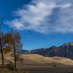 Calm morning at the dunes thumbnail