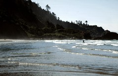 Surfer at Indian Beach (Thinspread) Tags: ocean blue sea green oregon silver seaside surf waves surfer surfing cliffs cannonbeach ecolastatepark treesforest