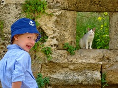 Romain and the Cat (desben) Tags: cat greece turquie greekislands rodos rhodes romain