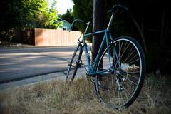 06-26-2013 (whlteXbread) Tags: summer bike bicycle trek evening colorado lafayette summicron dailies m9 35mmf2 2013