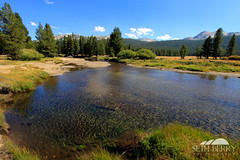 Tuolumne Meadows, Yosemite (Seth Berry Photography) Tags: california park mountains grass river high stream pass meadows sierra clear national yosemite tuolumne tuolumnemeadows nevadas tiogapass tioga sethberryphotography