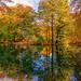 farbenfroher Herbst 2