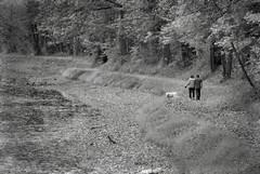 Autumn Walk (MTSOfan) Tags: dog october couple towpath greyscale delawarecanal autumningrayscale