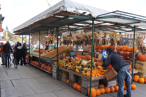 Byward Market in the Fall