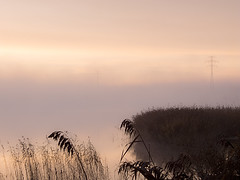 Morgennebel (funk_explosion) Tags: fog sunrise nebel sonnenaufgang mecklenburgvorpommern mritz waren bestcapturesaoi fujix10