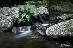 Crystal Cascades ([HUN/AUS]kotkoda93) Tags: longexposure water creek river waterfall rocks long exposure crystal peaceful australia calm boulders cascades queensland shimmer