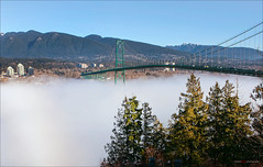 Fog Under The Lions Gate Bridge (Clayton Perry Photoworks) Tags: bridge winter sunshine fog vancouver stanleypark lionsgatebridge