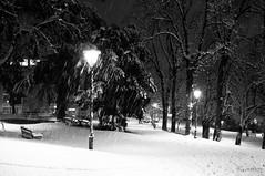 Parco e Neve (Kumitey) Tags: snow neve trento piazza duomo trentino pupazzi